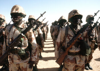 Soldiers in a Niger army unit stand in formation while a dignitary visits their outpost during Operation Desert Shield.  The men are armed with M-14 rifles.