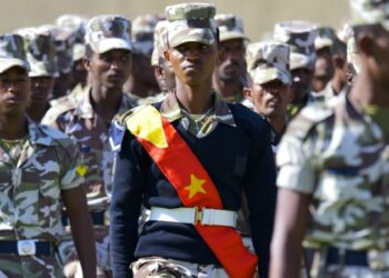 The regional government in Tigray has a powerful force © Droits Réservés